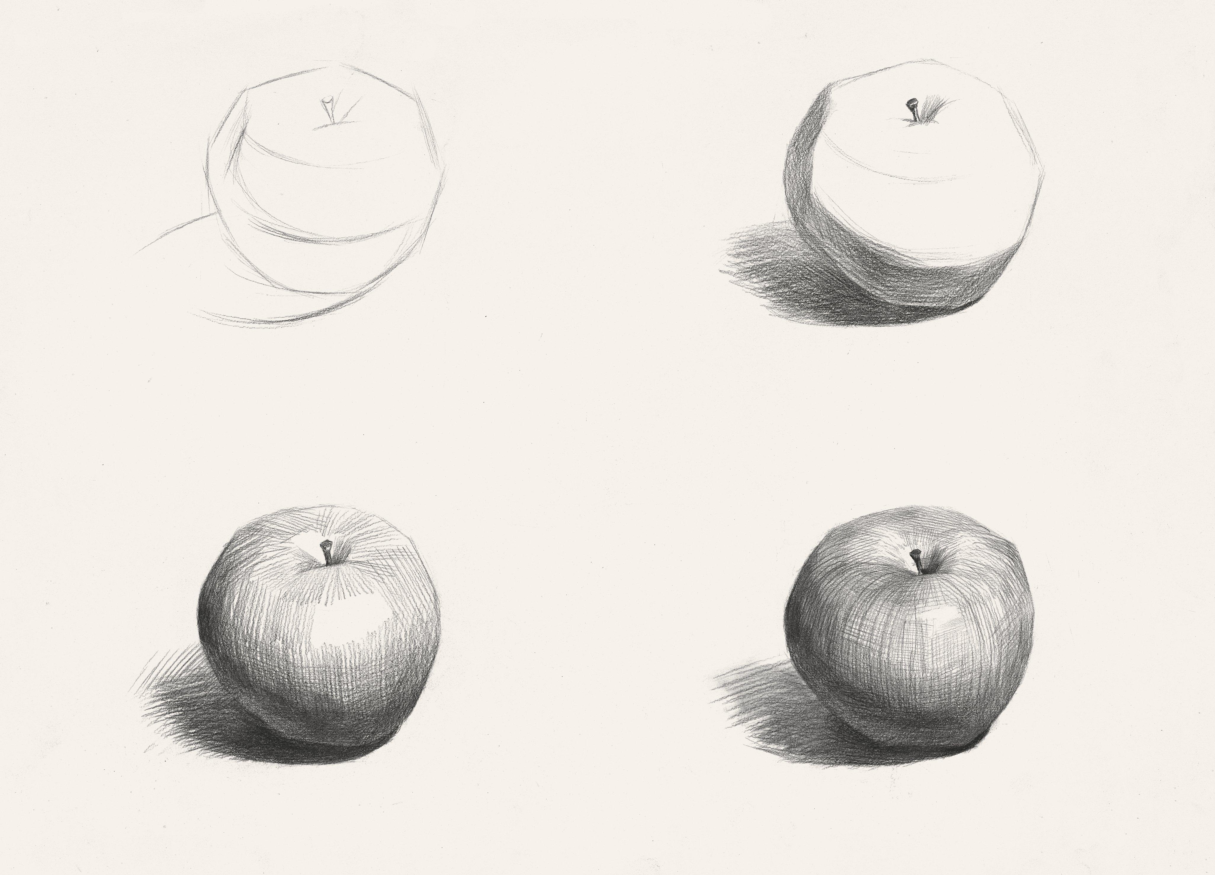 素描静物步骤图素描苹果苹果,美术作品图库 美术宝图库